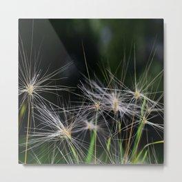 Elegant Nature Metal Print