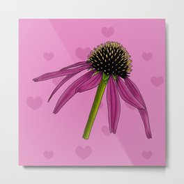 Floral Pattern With Pink Background, Detailed Flower Illustration Of Echinacea Flowe Metal Print