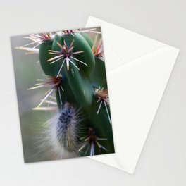 Fuzzy Caterpillar on Cactus 2 Stationery Cards