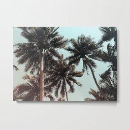 Palms Beach Gradient Metal Print