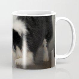 Ready to Play - Border Collie Coffee Mug