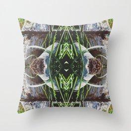 //°*Solitude ●f °◇° the Scythian*°/// Throw Pillow