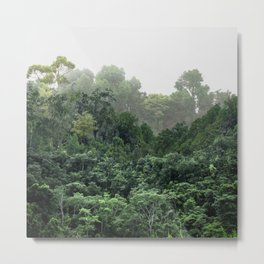 Tropical Foggy Forest Metal Print