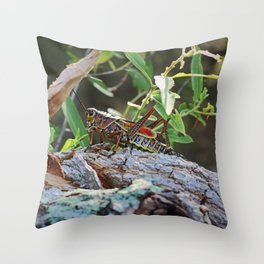 A Lubber in the Slough III Throw Pillow