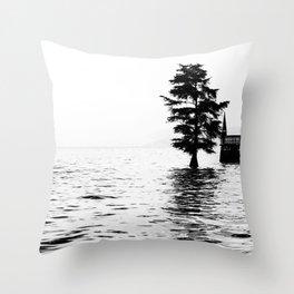 Fir in the water Throw Pillow