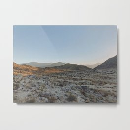 Anza Borrego II / California Metal Print