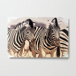 Zebra's Metal Print