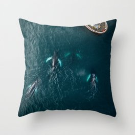 School of humpback whales playing with a boat Throw Pillow
