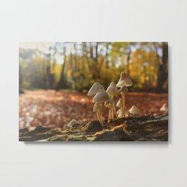 That Autumn Feeling Metal Print