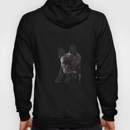 The guilty French Bulldog Hoody