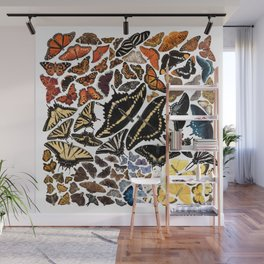 Butterflies of North America Wall Mural