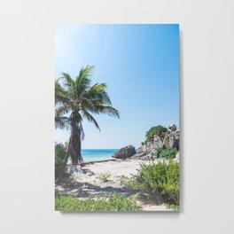 Beautiful Tropical Scenery Metal Print