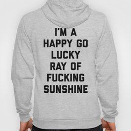 Ray Of Fucking Sunshine Funny Quote Hoodie