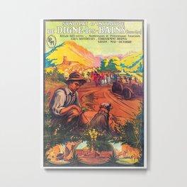 Vineyard Of Les Bains Metal Print