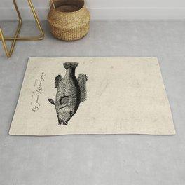 Vintage poster: Fish I Rug