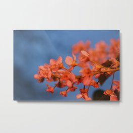 Floral Flash Metal Print
