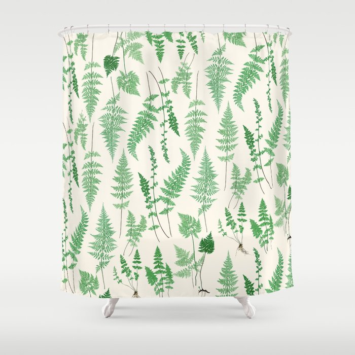 Ferns on Cream I - Botanical Print Shower Curtain
