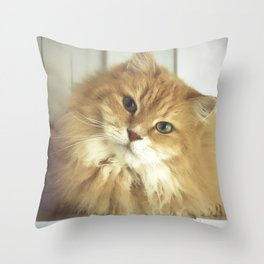 Siberian cat. Portrait of Mr. Cesare Throw Pillow
