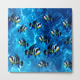 Frontosa Cichlid School Aquarium Fish Keeping  Metal Print