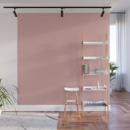 Rose Blush Pink D9A6A1 Solid Color Block Wall Mural