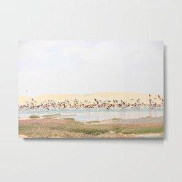 Flamingos Taking Flight Metal Print