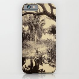 Live Oaks And Palmetto Everglades Florida 1886 - Vintage Photo By George Barker iPhone Case