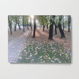 End of summer afternoon in park Metal Print