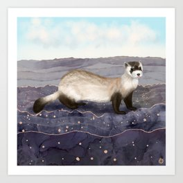 The Black Footed Ferret   Art Print
