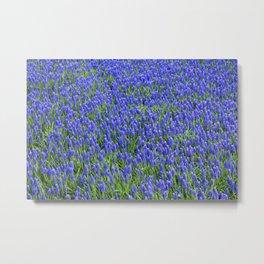 Blue Flowers Pattern Metal Print