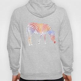 I met a rainbow zebra in my dream Hoody