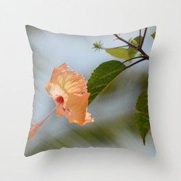 hi-bliss-cus Throw Pillow