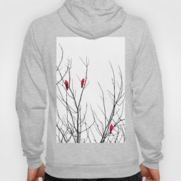 Artistic Bright Red Birds on Tree Branches Hoodie