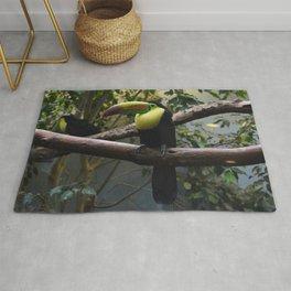 National Aviary - Pittsburgh - Keel Billed Toucan 1 Rug