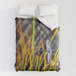 Damselfly Comforters