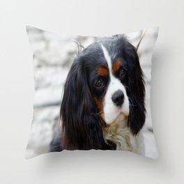King Charles Cavalier Portrait Throw Pillow