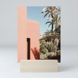 Hacienda Mini Art Print