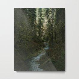 Oregon Forest V Metal Print