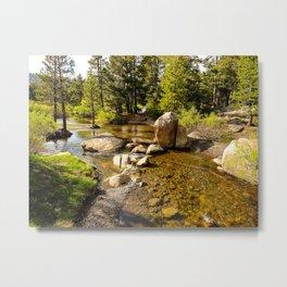 Creek at Silver Lake, Eldorado National Forest Metal Print