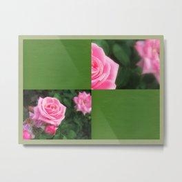 Pink Roses in Anzures 1 Blank Q5F0 Metal Print