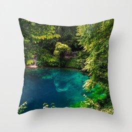 Blue pot - Blaubeueren- Baden-Württemberg - Germany Throw Pillow