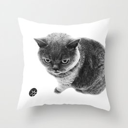Lizzie & The Plug Hole: Remastered Throw Pillow