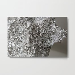 alu landscape Metal Print