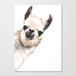 Sneaky Llama White Leinwanddruck