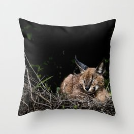 Napping Cat Throw Pillow