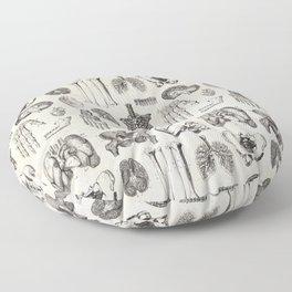 Human Anatomy Floor Pillow