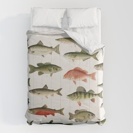 Illustrated Denton Fish Chart of Fishes of North America Comforters