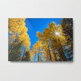 THE AUTUMN SUN COLORADO ASPEN TREE FALL LANDSCAPE  Metal Print