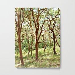 Ocean Woods Metal Print