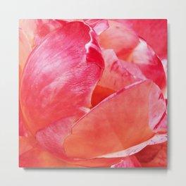 Rosebud Pink 615 Metal Print