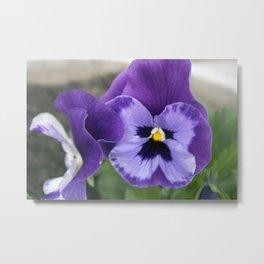 Spring Flowers Series 65 Metal Print